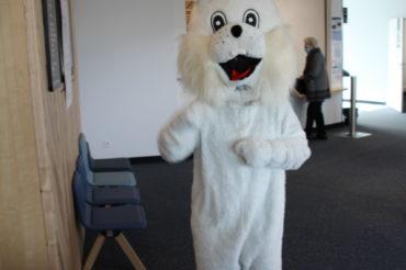 [ JOYEUSES PÂQUES ] Le lapin de Pâques dans les services de Schuman !